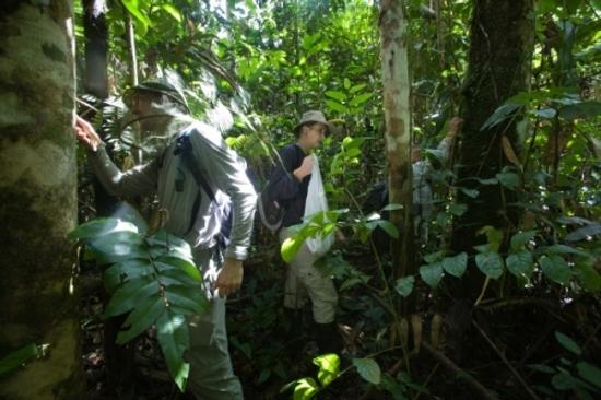 Andes Expedition, Gonzales-Vigil